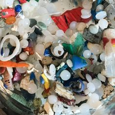 Beer, Drinking Water And Fish: Tiny Plastic Is Everywhere You Make A Difference, Our Environment, Save Water, Drinking Water, Things To Come, Beer, Plastic, Fish, Environmental Science