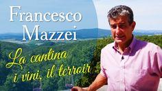Francesco Mazzei - La cantina, i vini, il terroir. @marchesimazzei #mazzei #fonterutoli #tuscany #wine