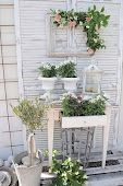 vintage shutters+frame+side table with plants