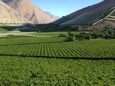 Valle del Elqui Chile