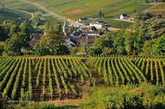 Route des Grands Crus, best way to travel through France