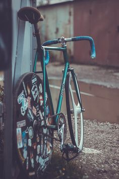 Track Bike Gone Wild