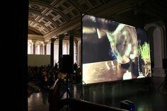 Internet Cat Video Festival, Gallery 1, GoMA Gallery Of Modern Art, Art Gallery, Cat Video, Most Visited, Cat Gif, Internet, Cats, Art Museum, Gatos