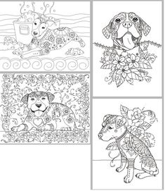 This coloring book consists of 15 hand drawn images of beautiful Pitbulls for you to color. The file is 3 high quality PDF files each containing 4-6