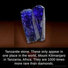 25 Mind Blowing Facts That Will Surprise You Instantly - Swish Today The More You Know, Good To Know, Crystals And Gemstones, Stones And Crystals, Healing Crystals, Wtf Fun Facts, Awesome Facts, Random Facts, Interesting Facts