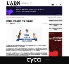 #cyca dans DOC NEWS pour le projet Hill'school // #advertising #hills #LADN_EU