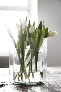 White tulips-minimal,simple and chic decoration