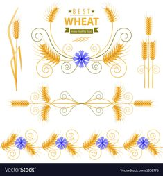 Wheat design elements set. Download a Free Preview or High Quality Adobe Illustrator Ai, EPS, PDF and High Resolution JPEG versions.