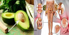 Como proteger tu cuerpo con las semillas de aguacate. Su efecto es poderoso..! - TuSalud.Info