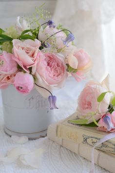 roses, Spring flowers - beauty 16