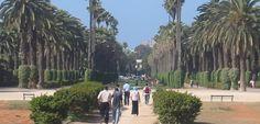 Conocer encantos de Casablanca en vacaciones - http://www.absolutmarruecos.com/conocer-encantos-de-casablanca-en-vacaciones/