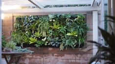 Plant Pocket Wall Garden Check out how we turn this blank outdoor wall into a lush vertical wall garden!Check out how we turn this blank outdoor wall into a lush vertical wall garden!