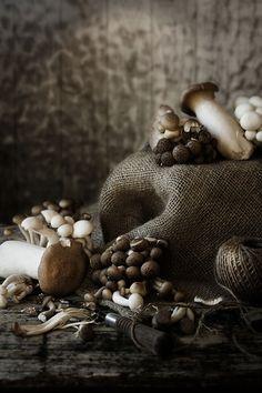 Pratos e Travessas | Monochromatic - browns
