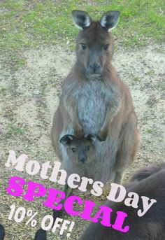 Mothers Day gifts made easy from Emu Ridge! Eucalyptus Oil Uses, Kangaroo Island, Mothers Day Special, Shop Local, Emu, Gifts For Mum, Make It Simple, Holidays, Link