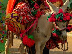 América Indígena: Pueblo Wayúu - (Colombia - Venezuela) Indigenous Tribes, American Spirit, Latin America, Burritos, Beautiful People, Knit Crochet, Culture, My Style, Animals