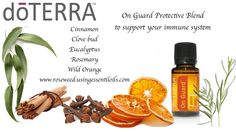 I love the support that On Guard has for our immune system. www.roseweed.usingessentialoils.com