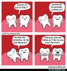 Akenini.com -Images drôles Divers - Funny miscellaneous cartoons