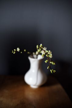 A Retreat: Mystical - Calm - Simple - Pure Modern Plant Stand, Deco Floral, Tips & Tricks, Tiny Flowers, Still Life Photography, Ikebana, Belle Photo, Decoration, Flower Arrangements