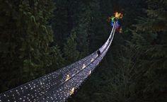 Vancouver, una passeggiata sul bosco a Natale.    (Reuters/Andy Clark)