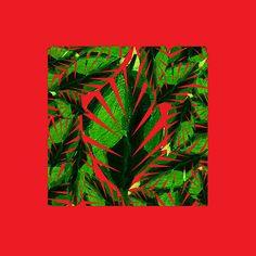 plante,vert,rose,moderne,simple,carrée,déco