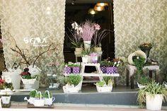 Floristería Madrid Flower shop