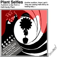 Don't know who gave Plant license to do this! Plant Cartoon, Screen Test, Halle Berry, Berries, It Cast, Plants, Pictures, Photos, Bury