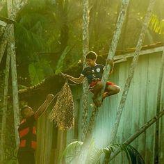 Pará, Opera Prima DELL'AMAZZONIA Compartilhe o Pará!  www.expedicaopara.com.br  Foto: Fernando Sette #Pará #Amazônia #ExpediçãoPará #nikon #expedição #worldcaptures #vscobelem #amazonjungle #brasilbr55 #fernandosette #sette #igersbrasil #igersbelem #meubempara #belemcity #ig_para #belemphotos