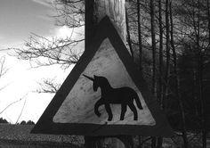 black-and-white-unicorn-Favim.com-596476
