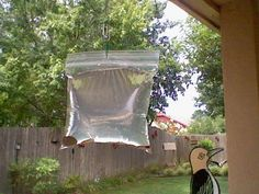 FLIES will never come in your house again! Pennies hung in a baggie of water near the door