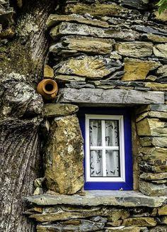 I love the random pot in the wall... Perfect bird house