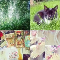my weekend:) a blogpost: then like now forever http://alicewonderland2.blogspot.co.uk/2016/05/then-like-now-forever.html