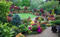 Colours of late spring at entrance to garden | by Four Seasons Garden