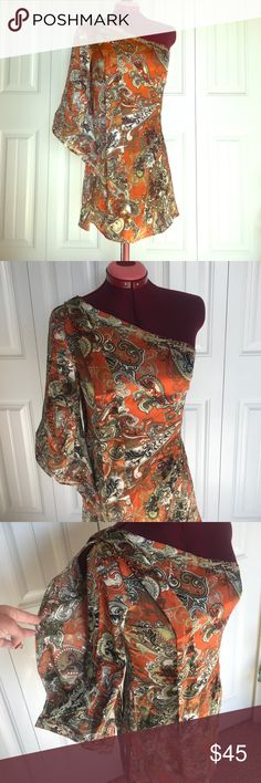 Classique Dress Classique Dress NWT. Size small. It zips up the side with one shoulder. Sleeve has a slit. The neck has some pretty stitching. Really pretty dress. In new condition. Comes from smoke free and clean home. classique Dresses Mini
