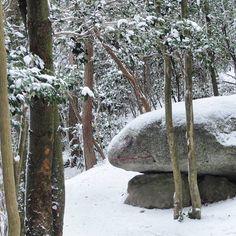【ak1h1r00】さんのInstagramをピンしています。 《. . 2017/01/17(火) 8/100 . 麓から見上げる猿投山は全く冠雪が無い様に見えますが、東の宮当たりからはまだまだ雪の感触が楽しめました😆 . ランドマークのカエル岩も只今、雪の中で冬眠中…🐸 . #愛知県 #豊田市 #猿投山 #カエル岩 #今年8回目 #山頂気温0度 #山 #雪 #岩 #森 #登山 #自然 #風景 #冬  #mountain #snow #rock #forest #trekking #nature #landscape #winter #frog》