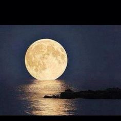 """""""The night the moon went out swimming with the sea...it was magick..."""""""