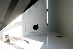 Cat house. Water tower house in Belgium.