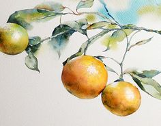 More Art Every Day On Watercolor Daily Follow Us And Use