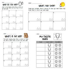 Five Senses observation sheets