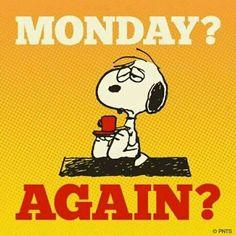 Eh niente, come ogni settimana eccoci all'odiato lunedì, dove tutto sembra con estrema pesantezza ricominciare! #LagoBluBlog _______________________ #fuckmonday #monday