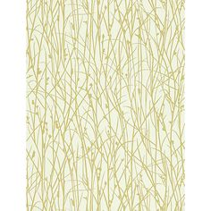 Buy Harlequin Grasses Wallpaper, Ecru / Celery, 110153 Online at johnlewis.com