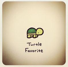 Turtle Favorite