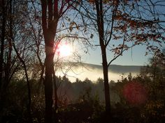 Foggy Morning | Flickr - Photo Sharing!