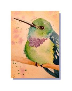 Hummingbird Watercolor Paintings | ORIGINAL ACEO Purple Chested Hummingbird Bird Watercolor Painting