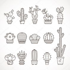 Download - Set of geometric cacti, cactus plants — Stock Illustration #81638054