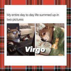 Virgo Memes, Virgo Quotes, Zodiac Signs Virgo, Zodiac Star Signs, Virgo Astrology, Virgo Personality, Virgo Love, Great Memes, Taurus