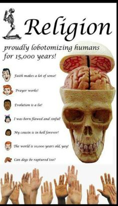 Stupid things believers say, and that god holds the universe he created together. Brain disection....totally