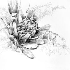 Option for inner arm? Seed Tattoo, Nativity, Needlework, Exotic, Illustration Art, King, Drawings, Drawing Ideas, Arm