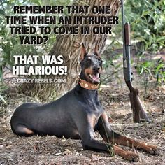 Two Dobermans ✔️ Guns ✔️✔️ Alarm system ✔️✔️✔️yep I think we're good in the protection dept!