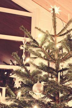 Christmas Tree detail!