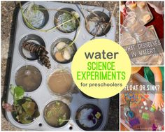 Water science experiments for preschoolers to try